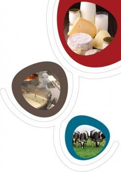 mastere produits laitiers